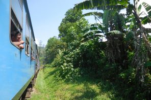 Sri Lanka : un pays magique !